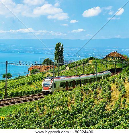 Train At Railroad At Lavaux Vineyard Terraces Lake Geneva Alps