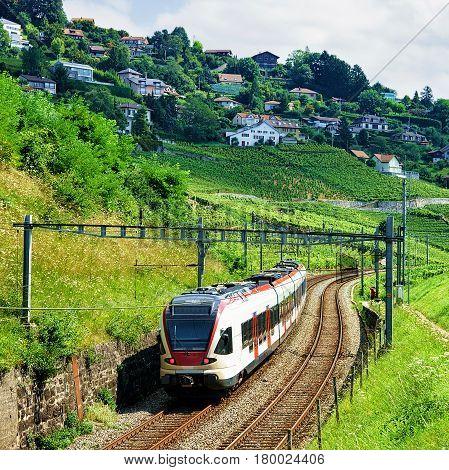 Train At Railroad At Lavaux Vineyard Terraces