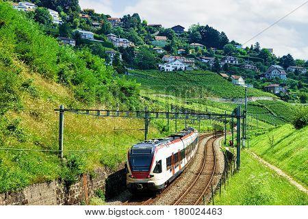 Train At Railroad On Lavaux Vineyard Terraces