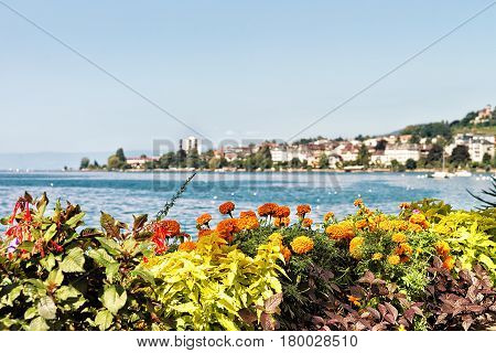 Flowers bloom in the embankment of Geneva Lake in Montreux Vaud canton Switzerland