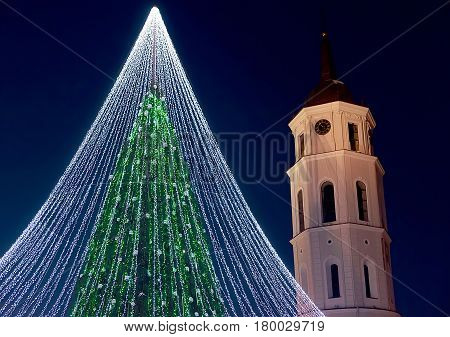 Christmas Tree And Belfry Vilnius In Evening