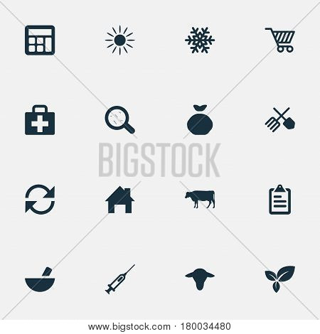 Vector Illustration Set Of Simple Agricultural Icons. Elements Cow, Sack, Sunshine And Other Synonyms Small, Drug And Calculator.