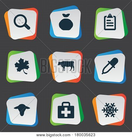 Vector Illustration Set Of Simple Agriculture Icons. Elements Pipette, List, Sack And Other Synonyms Cattle, Medicine And Buffalo.