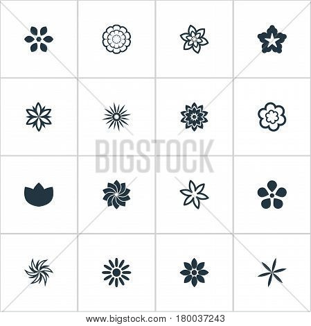 Vector Illustration Set Of Simple Rose Icons. Elements Crocus, Helianthus, Delphinium And Other Synonyms Laurel, Ranunculus And Marigold.