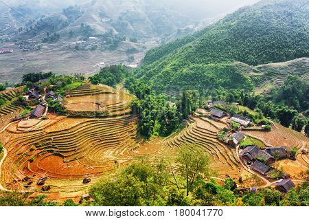 Top View Of Village Houses And Terraced Rice Fields Of Vietnam