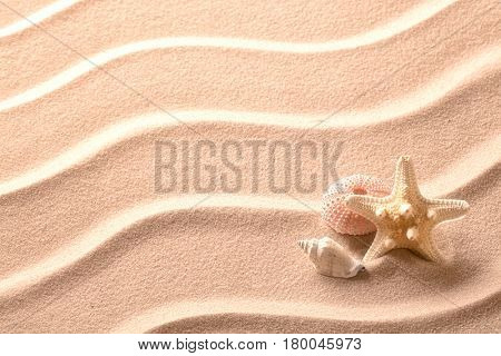 Ripples in beach sand background texture with sea shells and starfish.