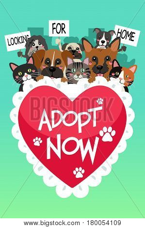 A vector illustration of Pets For Adoption Poster