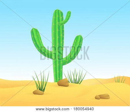 Light wild sand desert landscape template with green sharp cactus and stones vector illustration