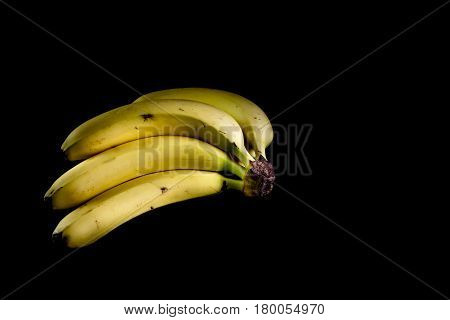Four Fresh Golden Bananas Isolated In Dark Background