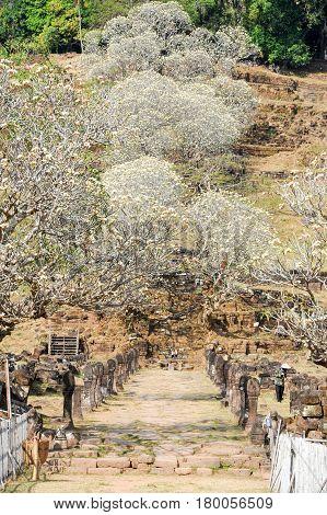 Wat Phu Is The Unesco World Heritage Site In Champasak