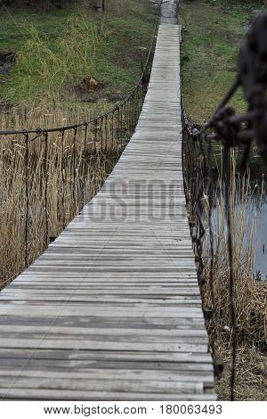 The old wooden bridge over the river and reeds, green nature, Ukraine.