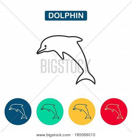 Dolphin. Vector silhouette on a white background. Dolphin icons for web and graphic design. Line style logo. Vector illustation.