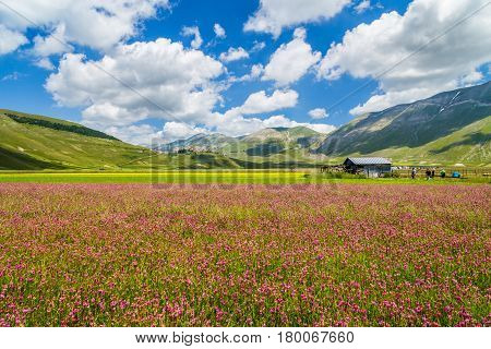 Piano Grande Mountain Plateau, Umbria, Italy