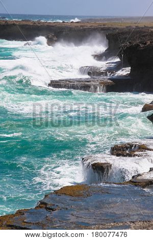 Atlantic Ocean and rocks on the north point of the island Barbados (Animal Flower Bay)