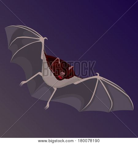 Brown flitter mouse with opened wings flat design isolated. Vector illustration of cheiroptera mammals cartoon style