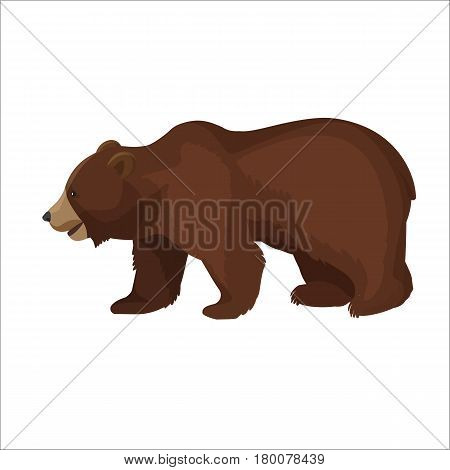 Large brown bear side view close-up graphic icon on white background. Wild animal stands on four paws with slightly opened mouth. Vector illustration of terrestrial predaceous mammal banner.