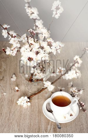 Tea biscuits and apricot flowers in morning light poster