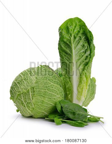 Fresh green Romaine Lettuce, Cabbage and Spinach leaves isolated on a white background.