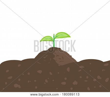 Sprout in the ground with place for text. Plant growing in the earth. Seedling icon. Vector illustration flat design