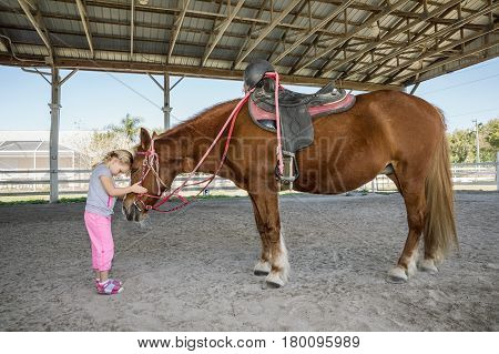 Lovely little girl cuddling a horse. Horse and jockey small - cute little girl in pink pants and her best friend