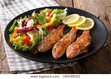 Delicious Fried Fish Red Mullet With Fresh Salad Closeup. Horizontal