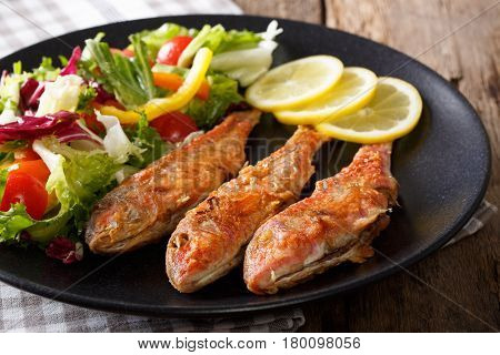 Delicious Fish Red Mullet With Fresh Mix Vegetable Salad Close-up. Horizontal