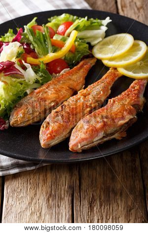 Delicious Fish Red Mullet With Fresh Mix Vegetable Salad Close-up. Vertical