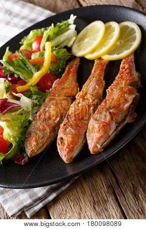 Fried Fish Red Mullet With Fresh Vegetable Salad Close-up. Vertical