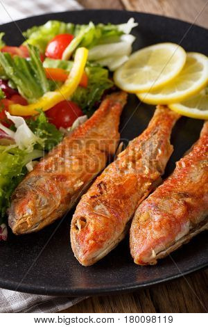 Roasted Red Mullet With Fresh Vegetables And Lemon Close-up. Vertical