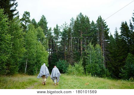 Back view of couple of hikers in plastic raincoats moving down forest path