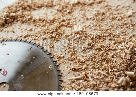 Still life of wooden workbench with small shavings and metal blade of circular saw, close-up shot