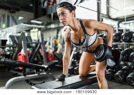 Portrait of muscular woman working out with heavy dumbbells on bench in modern gym, flexing and pumping arm muscles