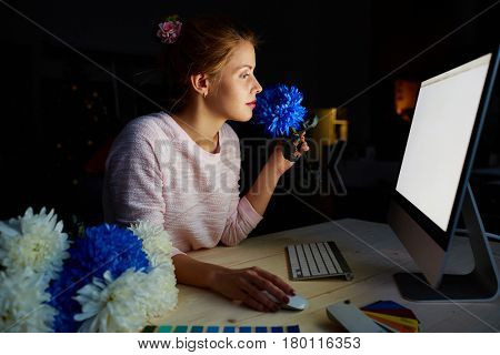 Profile view of pretty young floral designer sitting in front of modern computer and sniffing fresh deep blue chrysanthemum in dim studio