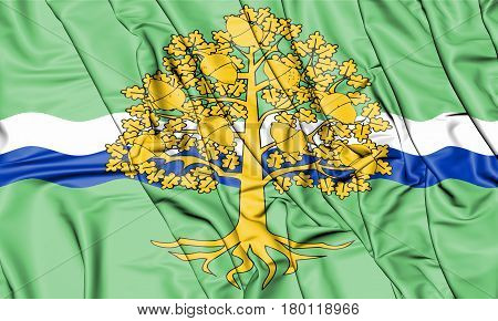 Flag_of_nottinghamshire_county_council