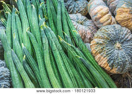 Fresh Angled loofah and pumpkin Angled Gourd (Luffa acutangula Roxb.) Vegetable for background