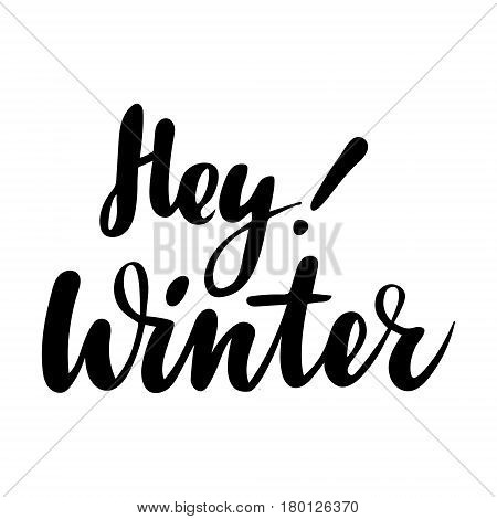 Greeting card with phrase Hey Winter. Vector isolated illustration: brush calligraphy, hand lettering. Inspirational typography poster. For calendar, postcard, label and decor