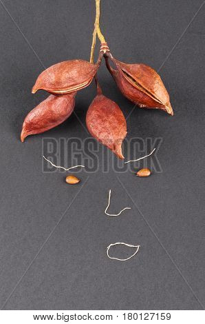 a picture of a face made with garlic roots ficus and carob seeds