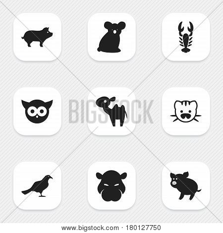 Set Of 9 Editable Zoo Icons. Includes Symbols Such As Hippopotamus, Swine, Night Fowl And More. Can Be Used For Web, Mobile, UI And Infographic Design.