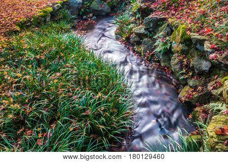 Autumn garden with stream water at Eikando Zenrinji Temple Kyoto Japan