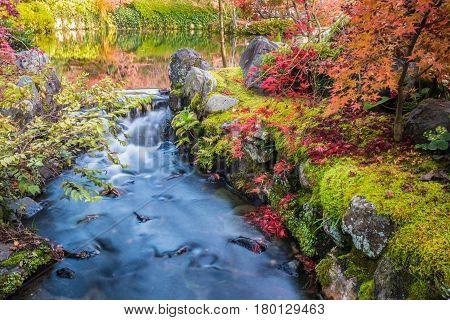 Autumn garden with stream water at Eikando Zenrinji temple Kyoto Japan.