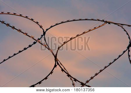 Barbed wire taken closeup on sunset sky background.
