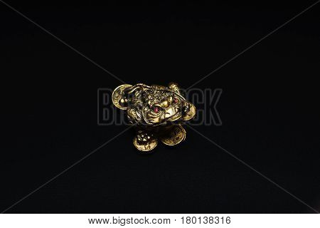 Golden money frog statue on a black background