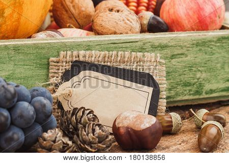 Thanksgiving day: Tray with different ripe vegetables inside