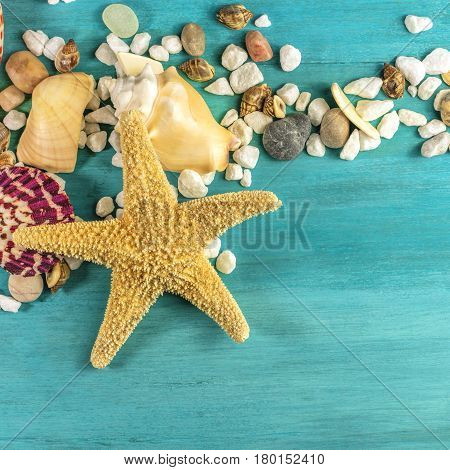 A square photo of a sea star, sea shells, and pebbles on a vibrant turquoise background, a design template for a summer vacation banner