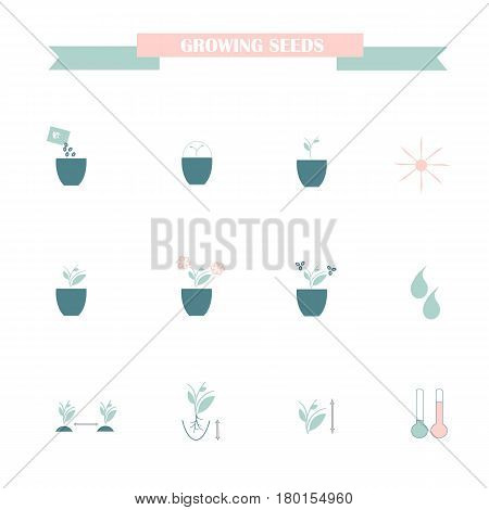 Flat icons of farming cultivation of seeds and plants, blue and pink on white stock vector illustration