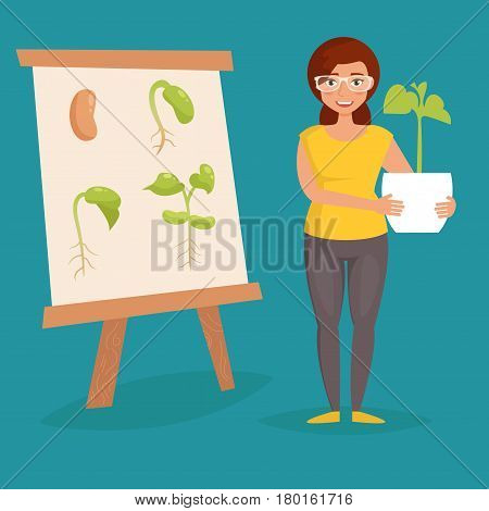 Growth stage of beans. Biological experience. Kids school assignment. Vector. Cartoon. Isolated Flat Illustration