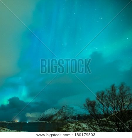 Aurora Borealis Known as Nother Lights Playing with Vivid Colors Over Lofoten Islands in Norway. Square Image Orientation