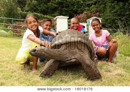 School kids with giant tortoise