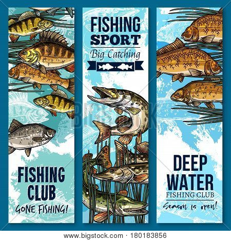 Fishing banner set with swimming fish. River perch, carp, pike, bream and crucian sketch poster of freshwater fish for fishing sport club or fisherman sporting competition flyer design