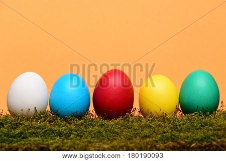 Painted Easter Colorful Eggs With Green Moss On Orange Background